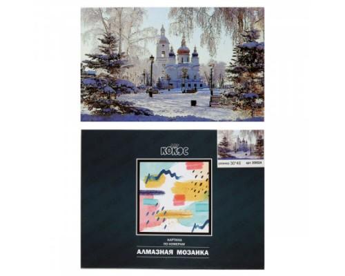 Алмазная мозаика 30*40см КОКОС Зимний пейзаж полная выкладка холст на подрамнике 209524